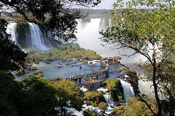 Die Iguazu-Wasserfälle stossen auf grosses Interesse von Koolspix