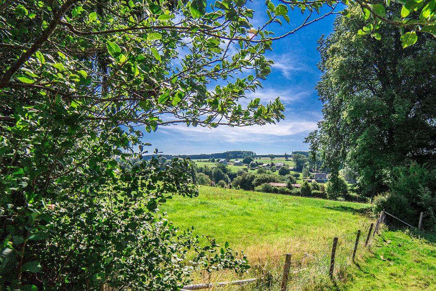 Landschap in de Ardennen van Thomas van der Willik