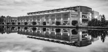 De Figeehal 2, Haarlem van Reinier Snijders