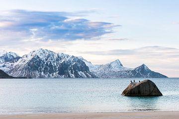 De ongelofelijke landschappen van de Lofoten