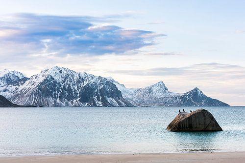 De ongelofelijke landschappen van de Lofoten van