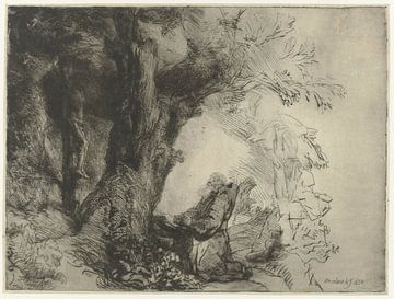 Saint François sous un arbre, en prière, Rembrandt van Rijn, 1657 (première gravure)
