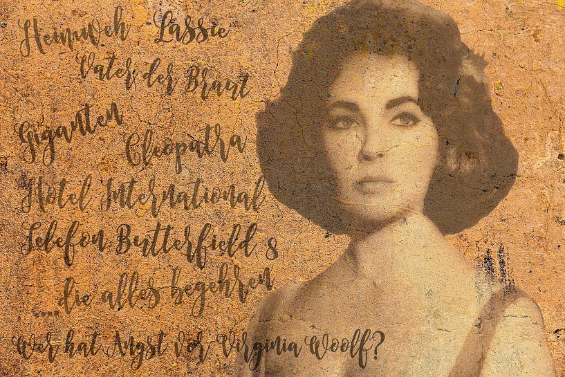 Legenden - Liz Taylor van Christine Nöhmeier