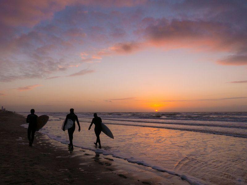 Surfers tijdens zonsondergang van bird bee flower and tree