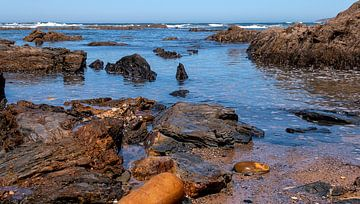 Felsküste Portugal von Corrie Ruijer