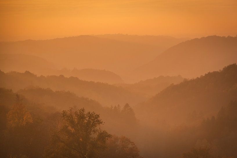 Avondzon in de Ardennen van Erwin Stevens