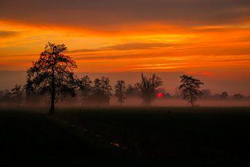 Langbroeks Landschaft (Die Niederlande) von Julius Koster