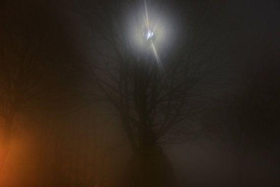 Foggy moon encounter