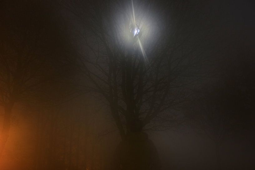Foggy moon encounter van Dennis Debie