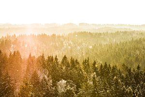 Zonsondergang van Dennis Van Den Elzen