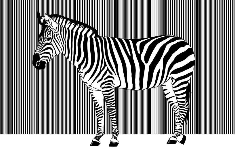Zebra Barcode von Monika Jüngling