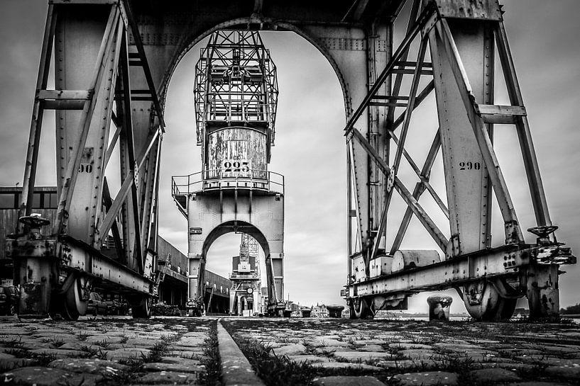 Antwerpen: Stalen Stadswachten - De Havenkranen van juvani photo