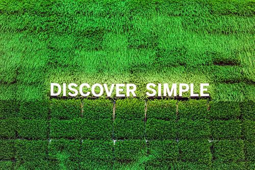 Discover Simple