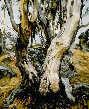 Australiens Landschaft an der Küste von KB Prints