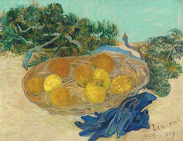 Stillleben mit Orangen und Zitronen mit blauen Handschuhen, Vincent van Gogh