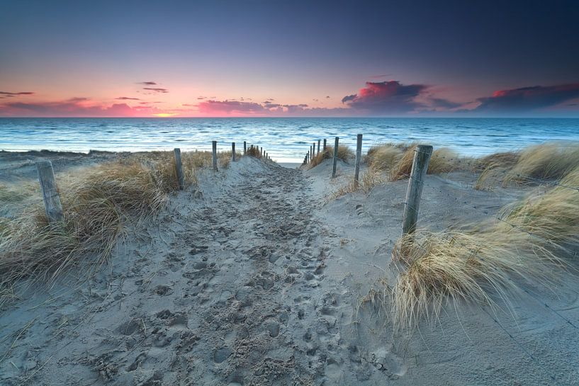 Way to the North sea van Olha Rohulya