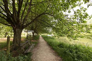 Jaagpad langs de Kromme Rijn bij kersenboomgaard
