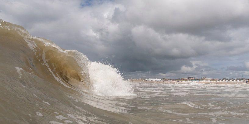 surf von Arjan van Duijvenboden