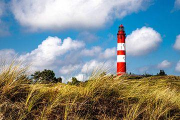 Blick zum Amrumer Leuchtturm aus den Dünen von Alexander Wolff