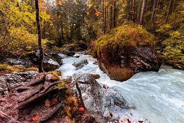 Herfst in het betoverde bos van Dirk Rüter