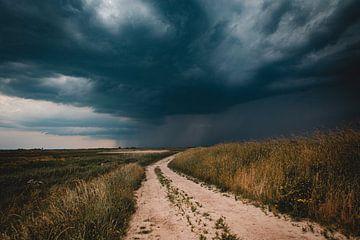 Regen op komst van Frank Verburg
