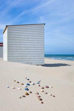 Zon op het strand van