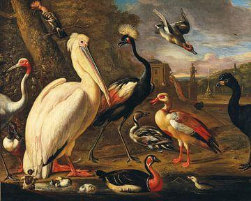 Ein Pelikan und andere Vögel auf dem Wasser, Umkreis von Melchior d'Hondecoeter  von