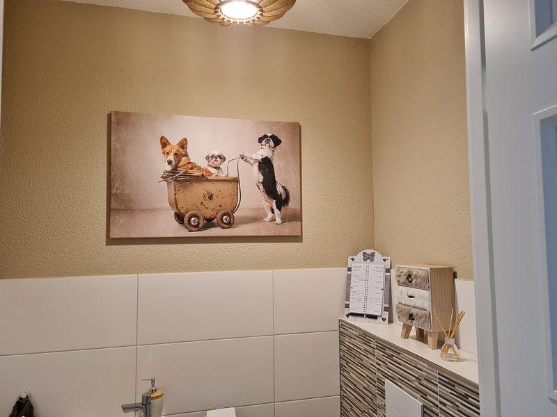 Kundenfoto: Hundenfamilie, shih ztu an gorki von Wendy van Kuler