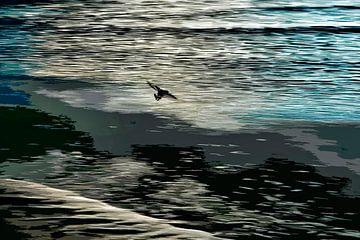 Vliegende scholekster op het wad van Hanneke Luit