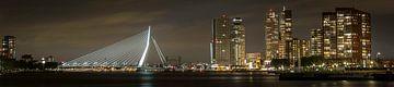 Panorama van skyline van Rotterdam van Miranda van Hulst