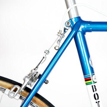 Bottecchia Rennrad von Leon van Bon