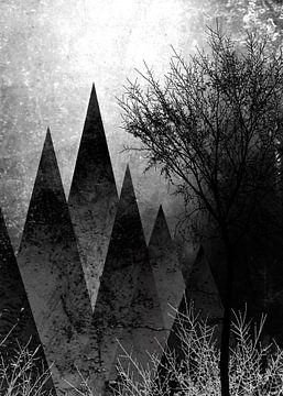 TREES VIII-c von Pia Schneider