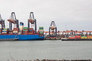 Containerterminal Tweede Maasvlakte