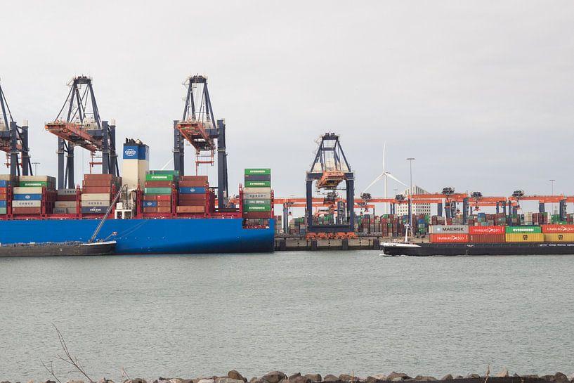 Containerterminal Tweede Maasvlakte van André Hamerpagt