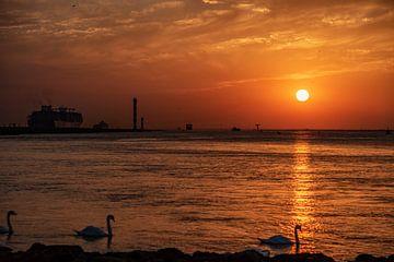 Zonsondergang is in aantocht, gezien aan het eind van de Landtong Rozenburg