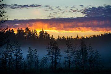 Farbiger Himmel bei Sonnenuntergang in Finnland von Caroline van der Vecht