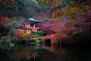 Japanse herfst van