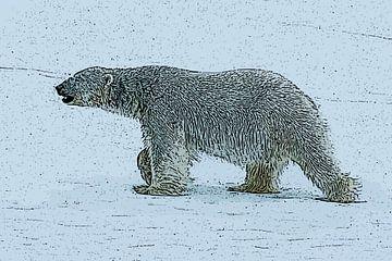 IJsbeer lopend Svalbard Spitsbergen van e pha