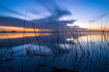 Zen bei Sonnenaufgang von Joyce Sahin