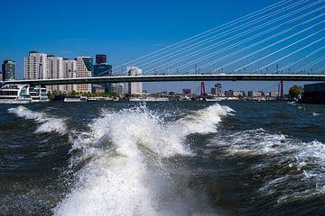 Dynamisch Rotterdam van Henny van de Schraaf