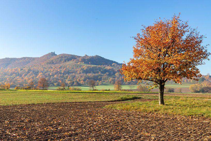 Herbstbaum van Britta Kärcher