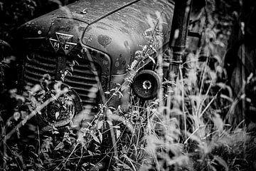 MASSEY FERGUSON TRACTOR van SchippersFotografie