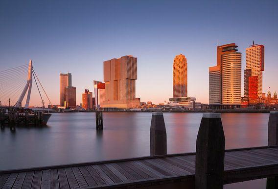 skyline van rotterdam bij zonsondergang