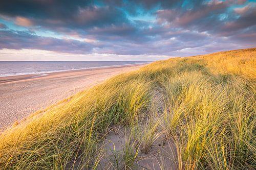 Nederlands duinlandschap van Original Mostert Photography