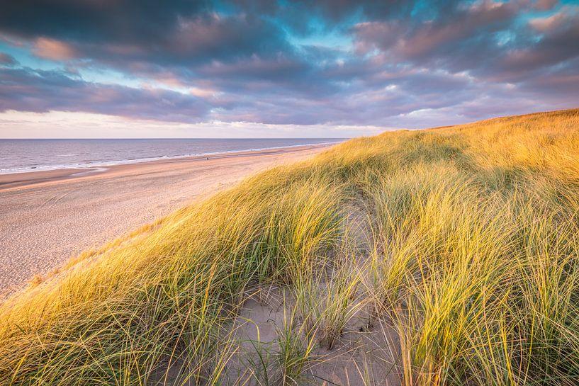 Hollands Duinlandschap van Original Mostert Photography