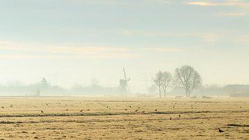 Koude ochtend van Cor de Bruijn
