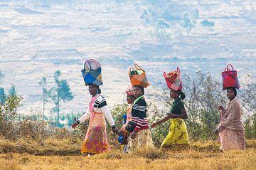 Kleurrijk Madagascar van Elles Rijsdijk