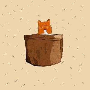 Katze in der Tasche