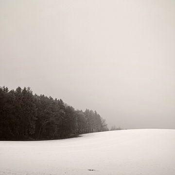Verschneites Hügelland von Lena Weisbek