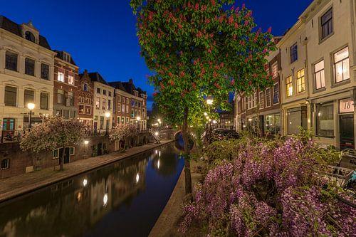 Lente aan de Oudegracht in Utrecht.